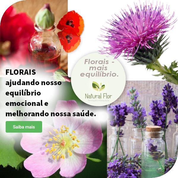 Florais Blog